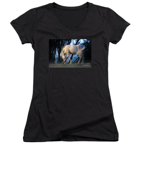 White Horse In The Early Evening Mist Women's V-Neck T-Shirt (Junior Cut) by Nick  Biemans