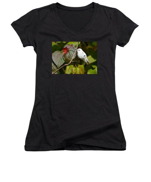 White Hummingbird Women's V-Neck