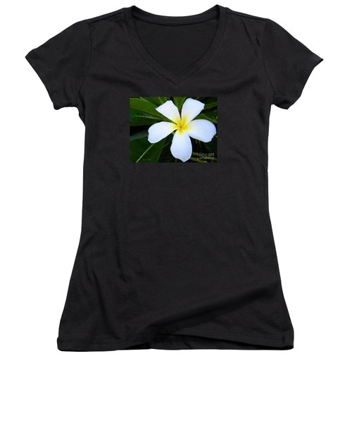 Women's V-Neck T-Shirt (Junior Cut) featuring the mixed media White Plumeria by Anthony Fishburne