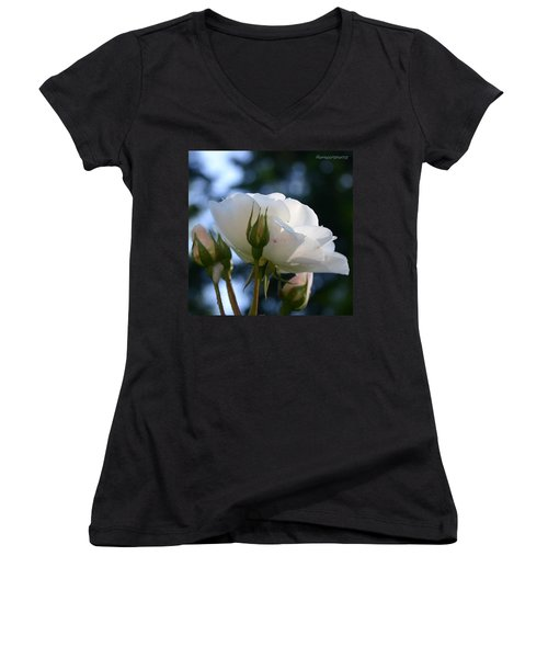 White Rose And Rosebuds In Anna's Gardens Women's V-Neck (Athletic Fit)