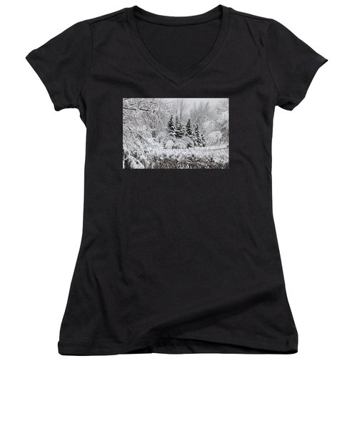 White Winter Day Women's V-Neck (Athletic Fit)