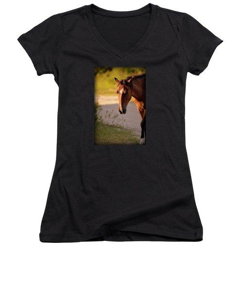 Wild Shadows Women's V-Neck T-Shirt