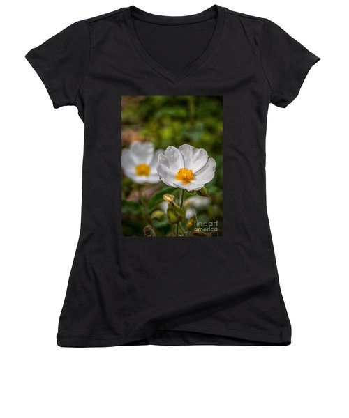 Wildflower Poppin Women's V-Neck T-Shirt