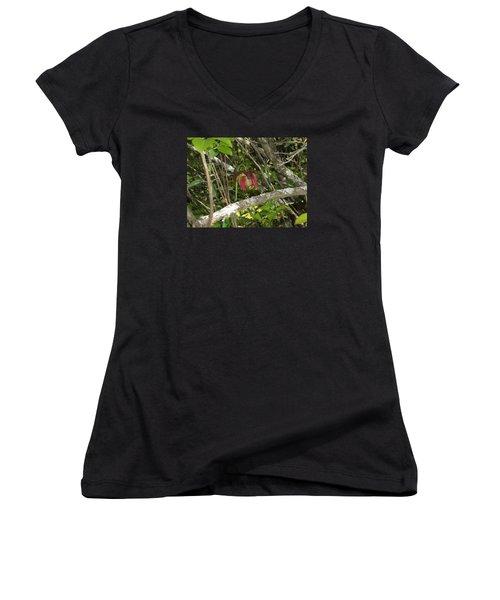 Women's V-Neck T-Shirt (Junior Cut) featuring the photograph Wildflower by Robert Nickologianis