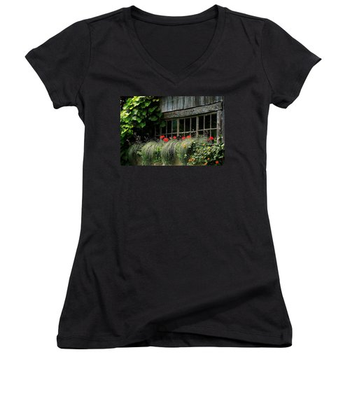 Window Boxes Women's V-Neck T-Shirt