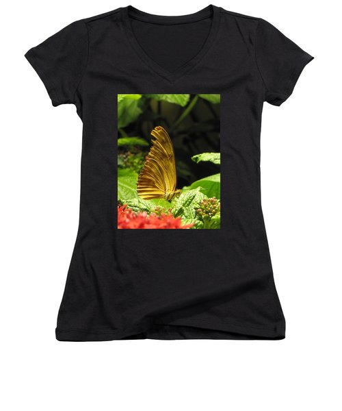 Wings Of Gold Women's V-Neck T-Shirt