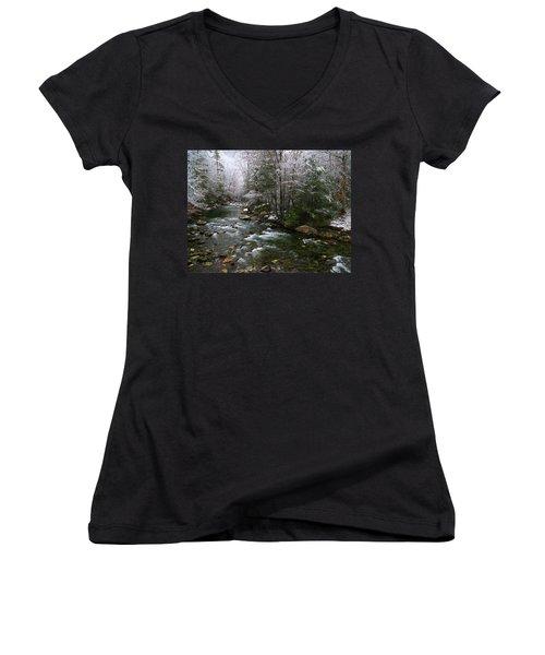 Winter Fresh Women's V-Neck T-Shirt (Junior Cut) by Michael Eingle