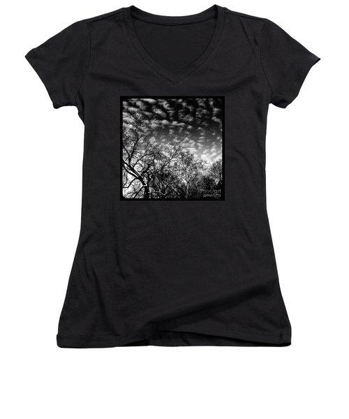 Winterfold - Monochrome Women's V-Neck
