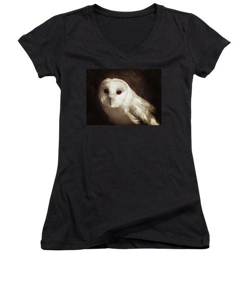 Wisdom Of An Owl Women's V-Neck