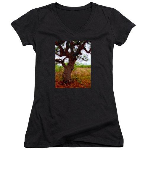 Da214 Wise Old Tree By Daniel Adams Women's V-Neck