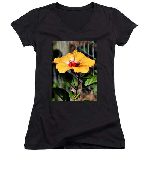 Yellow Bumble Bee Flower Women's V-Neck (Athletic Fit)