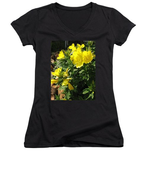 Yellow Primroses Women's V-Neck (Athletic Fit)