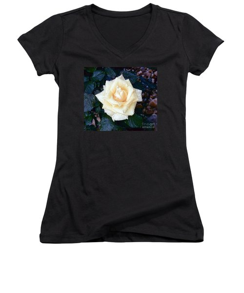 Women's V-Neck T-Shirt (Junior Cut) featuring the photograph Yellow Rose At Dawn by Alys Caviness-Gober