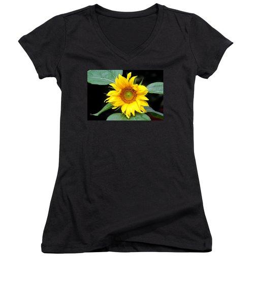 Yellow Sunflower Women's V-Neck T-Shirt (Junior Cut) by Trina  Ansel