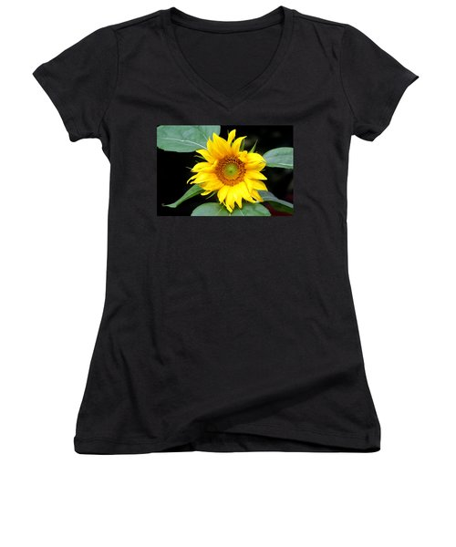 Yellow Sunflower Women's V-Neck