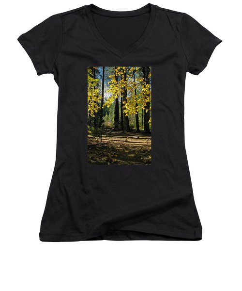 Women's V-Neck T-Shirt (Junior Cut) featuring the photograph Yosemite Fen Way by John Haldane
