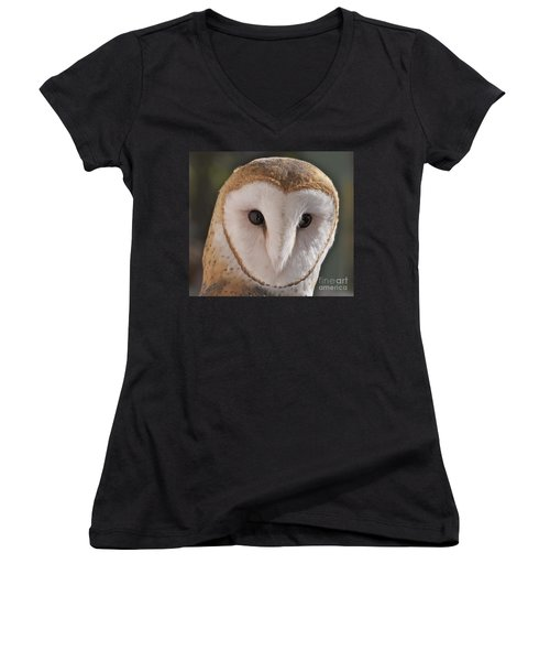Young Barn Owl Women's V-Neck (Athletic Fit)