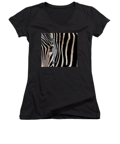 Zebras Face To Face Women's V-Neck T-Shirt