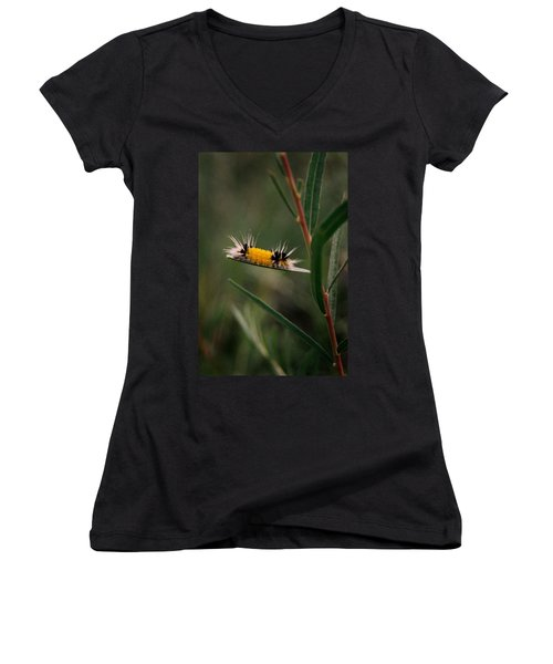 Struttin Your Stuff Women's V-Neck T-Shirt