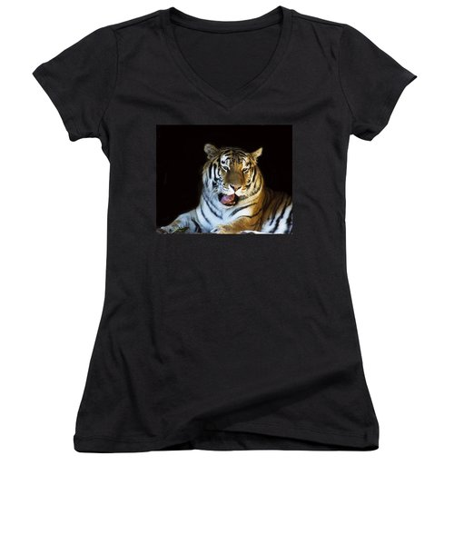 Awaking Tiger Women's V-Neck (Athletic Fit)