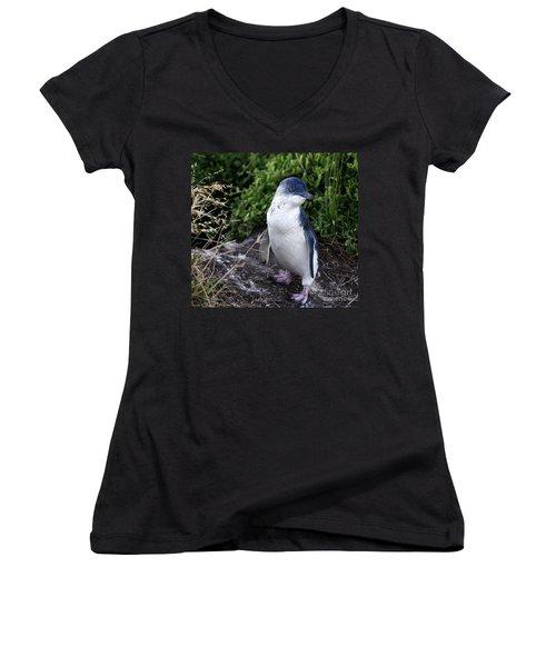 Fairy Penguin Women's V-Neck (Athletic Fit)