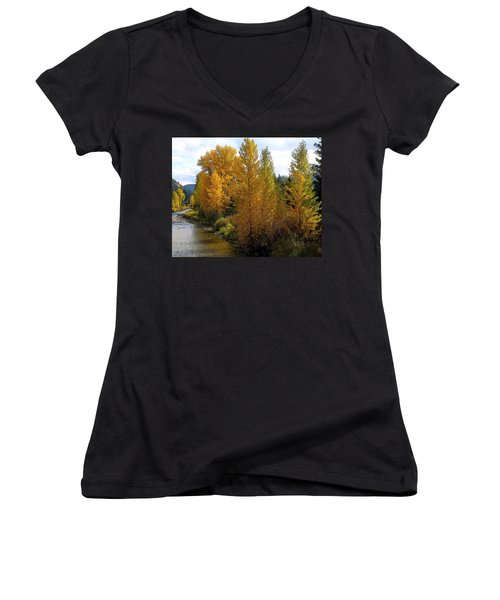 Fall Colors Women's V-Neck T-Shirt (Junior Cut) by Steve McKinzie