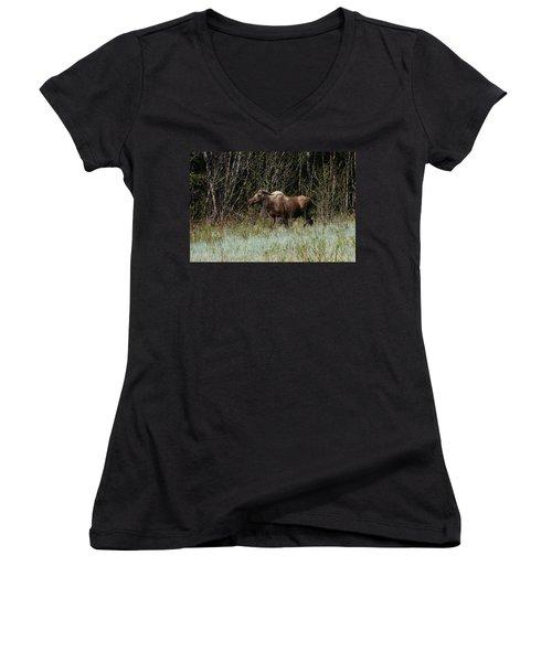 Women's V-Neck T-Shirt (Junior Cut) featuring the photograph Feeding Along by Doug Lloyd