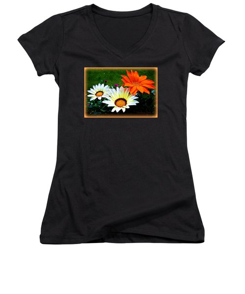 Garden Daisies Women's V-Neck T-Shirt