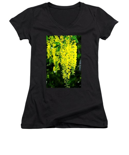 Golden Chain Tree Women's V-Neck T-Shirt