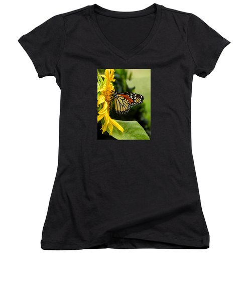Monarch And The Sunflower Women's V-Neck T-Shirt