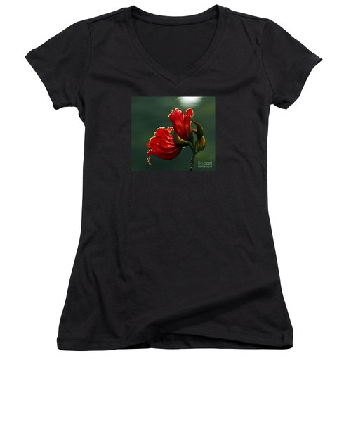 Out Of Africa- Mixed Media- Photo Composite- Altered Art Women's V-Neck T-Shirt