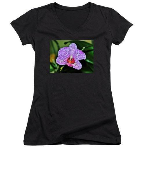 Women's V-Neck T-Shirt (Junior Cut) featuring the photograph Purple Orchid by Sherman Perry
