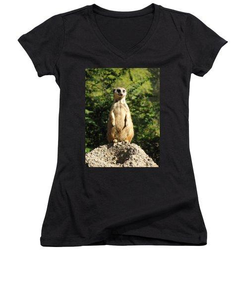 Women's V-Neck T-Shirt (Junior Cut) featuring the photograph Sentinel Meerkat by Carla Parris