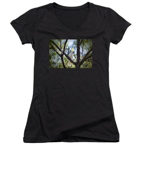 Sulphur Crested Cockatoo Women's V-Neck T-Shirt (Junior Cut) by Douglas Barnard