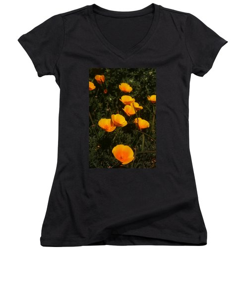 Big Sur California Women's V-Neck (Athletic Fit)