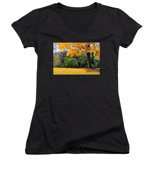 Women's V-Neck T-Shirt (Junior Cut) featuring the photograph Tree Of Gold by Joe  Ng