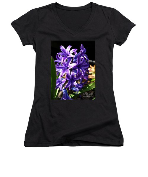 Hyacinth Named Peter Stuyvesant Women's V-Neck T-Shirt (Junior Cut) by J McCombie
