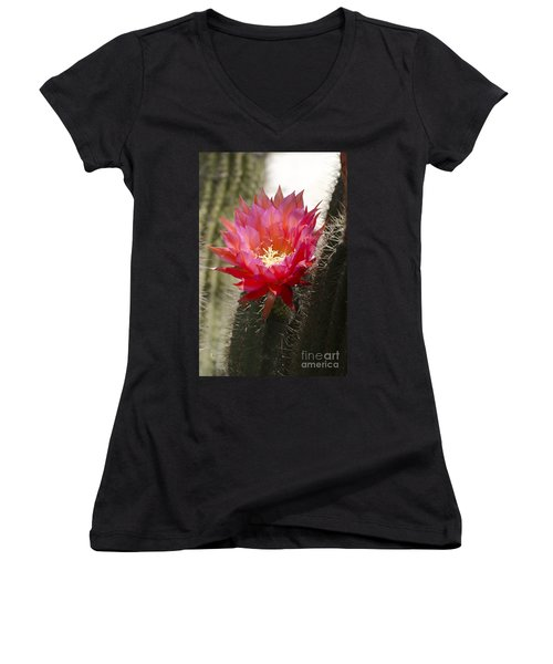 Red Cactus Flower Women's V-Neck (Athletic Fit)