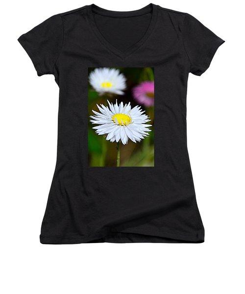 A Daisy Women's V-Neck T-Shirt (Junior Cut) by Martina Fagan