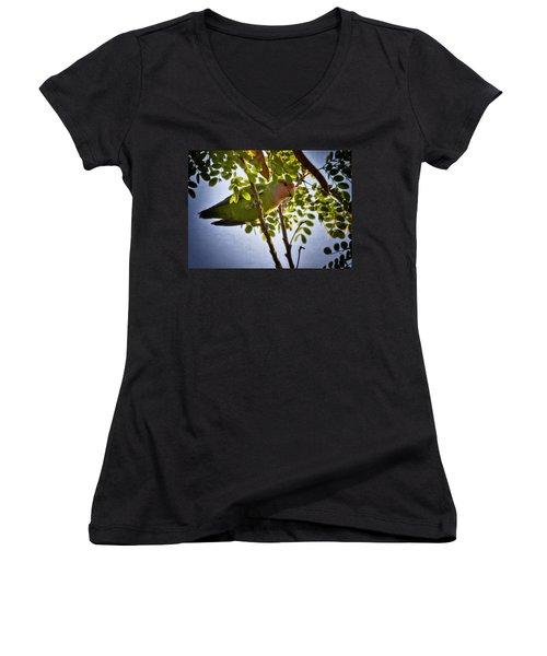 A Little Love  Women's V-Neck T-Shirt (Junior Cut) by Saija  Lehtonen