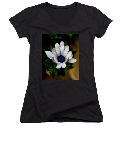 Women's V-Neck T-Shirt (Junior Cut) featuring the photograph African Daisy by Lynne Jenkins