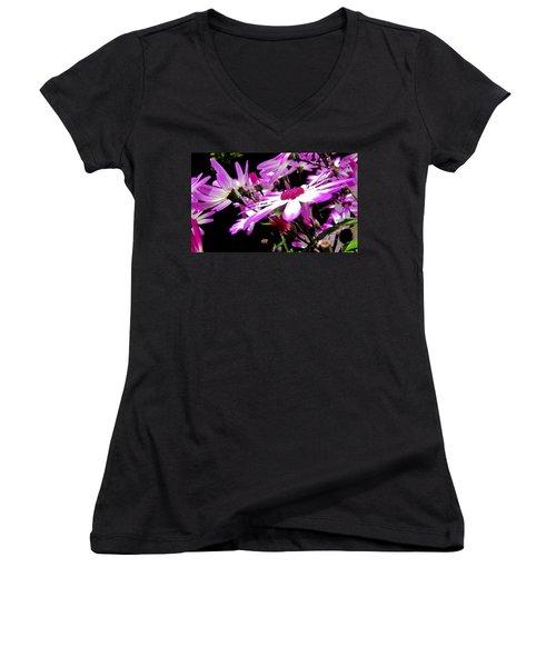 After The Rain Women's V-Neck T-Shirt (Junior Cut) by Barbara Walsh