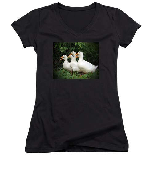 All My Ducks In A Row Women's V-Neck T-Shirt
