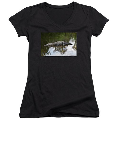 Alligator 1 Women's V-Neck T-Shirt (Junior Cut) by Joe Faherty