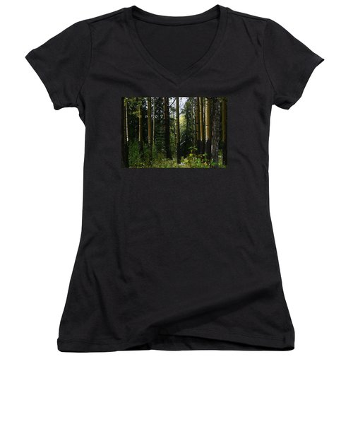 Aspens Banff National Park Women's V-Neck (Athletic Fit)