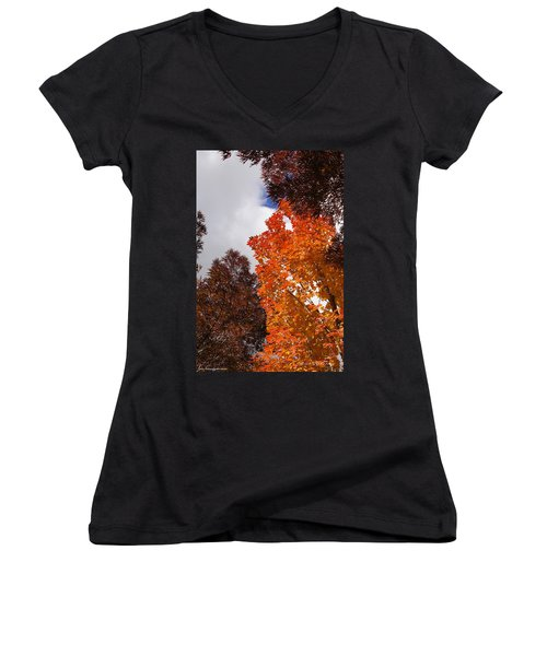 Women's V-Neck T-Shirt (Junior Cut) featuring the photograph Autumn Looking Up by Mick Anderson