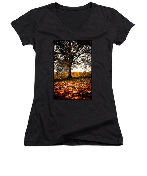 Autumnal Park Women's V-Neck