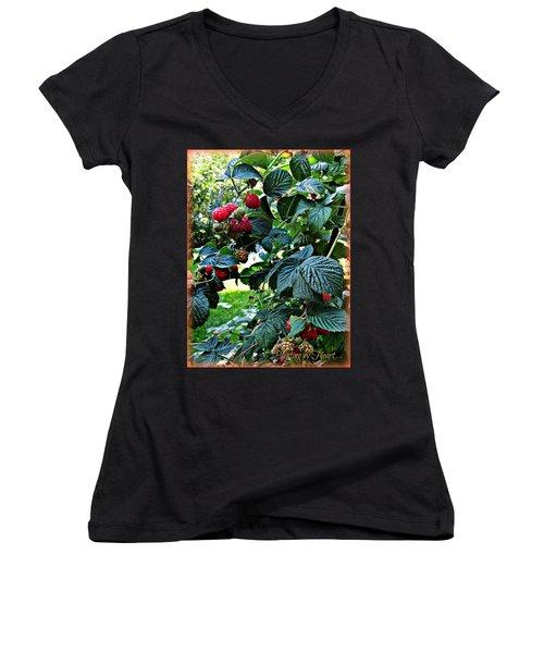 Backyard Berries Women's V-Neck