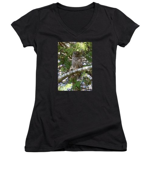 Women's V-Neck T-Shirt (Junior Cut) featuring the photograph Barred Owl  by Francine Frank