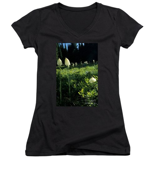 Women's V-Neck T-Shirt (Junior Cut) featuring the photograph Bear-grass II by Sharon Elliott